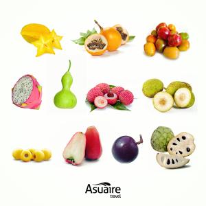 Notas-9-Dic-Frutas-Collage