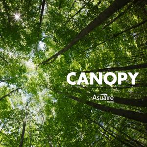 Notas-9-Dic-canopy-2