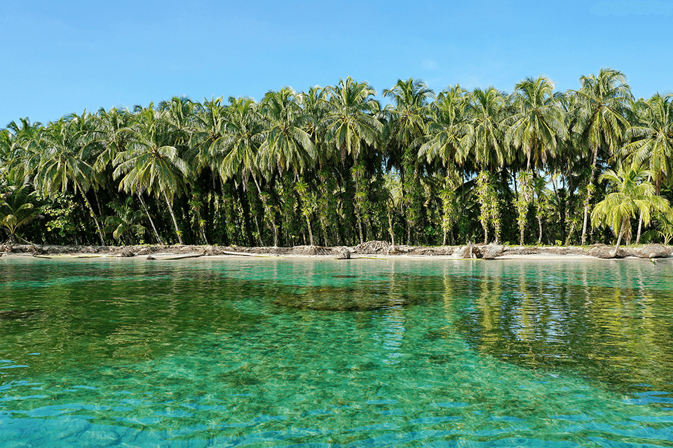 isla-zapatilla