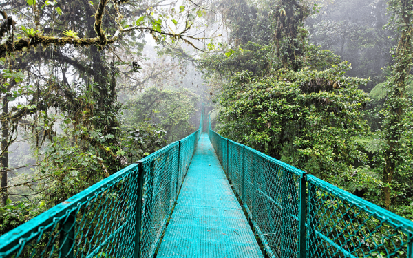 hanging-bridge-monteverde