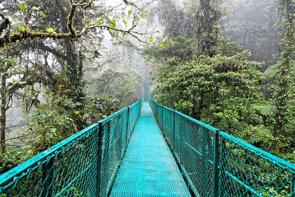 hanging-bridge-monteverde