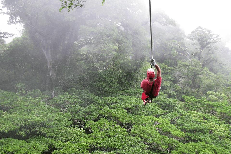 canopy-monteverde