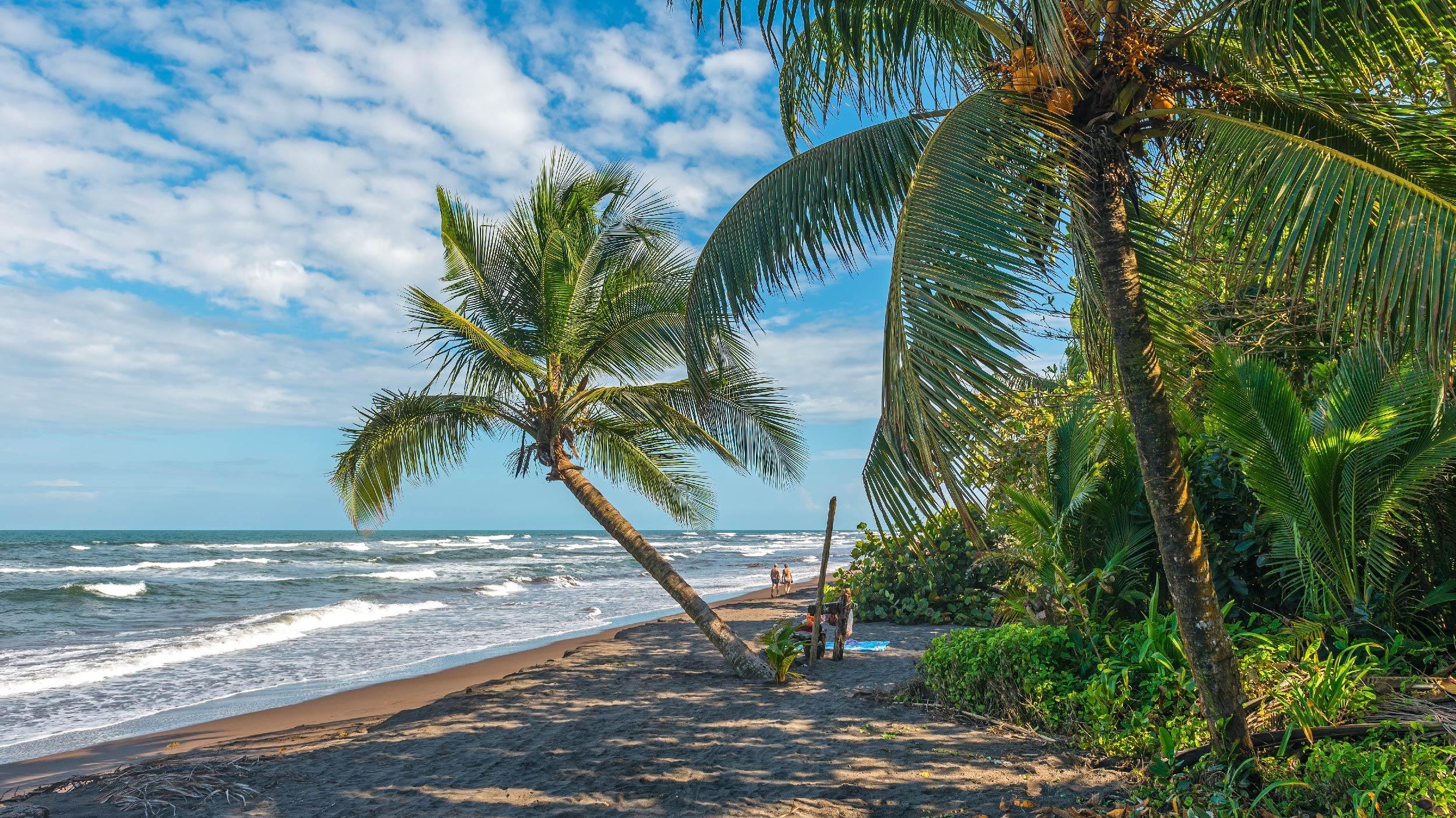 viaje a Tortuguero en Costa Rica