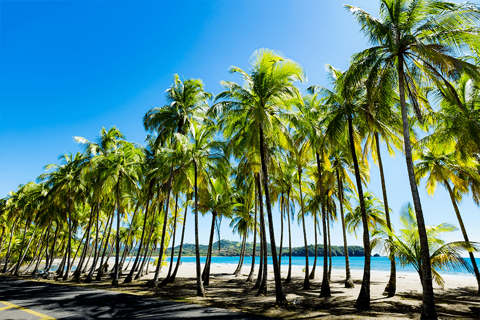 playa-carrillo