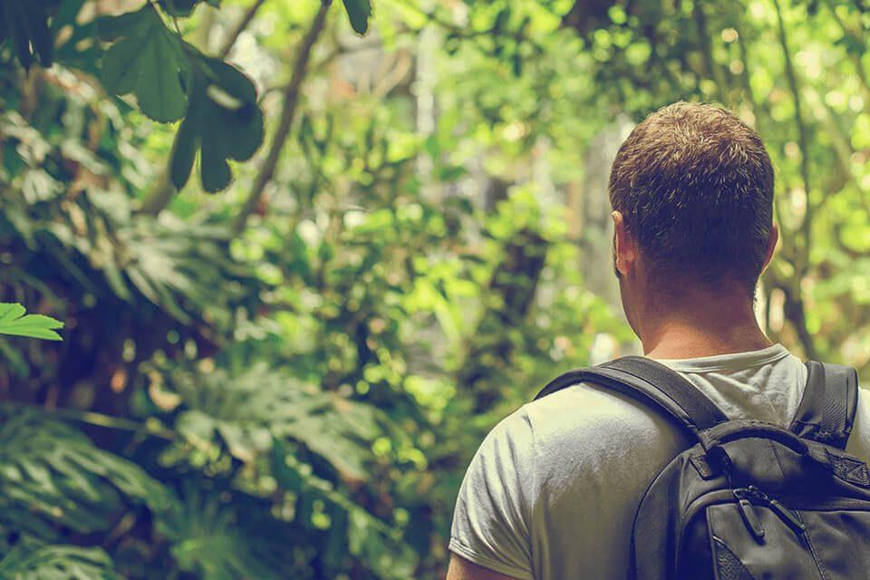 hombre-bosque