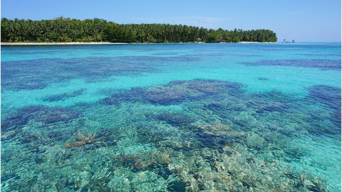 Cayo Coral en Bocas del Toro 04