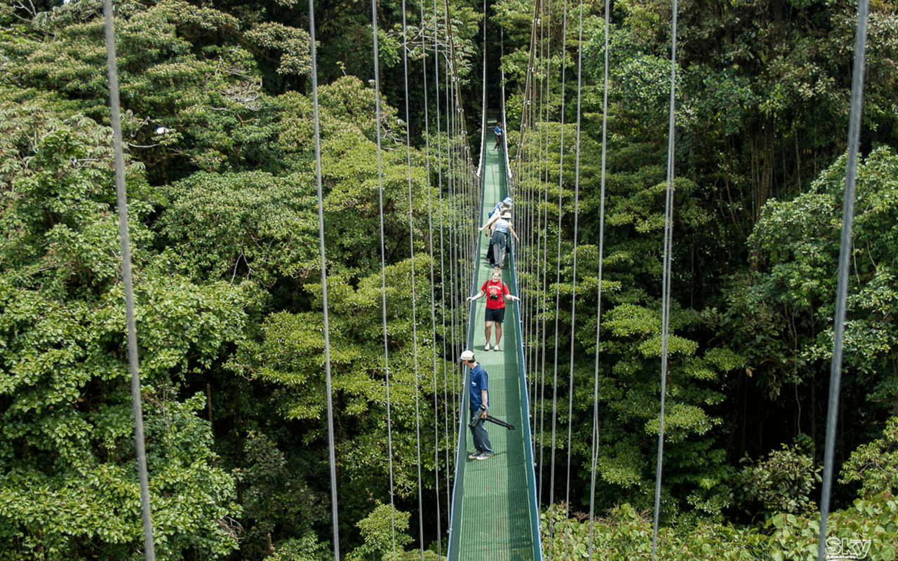 monteverde puente colgante