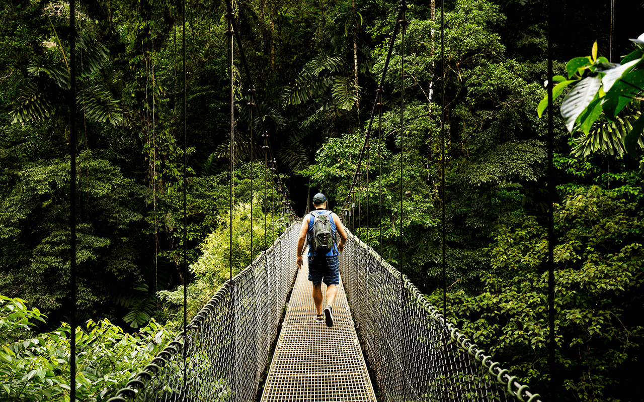 Man on Hanging Bridge