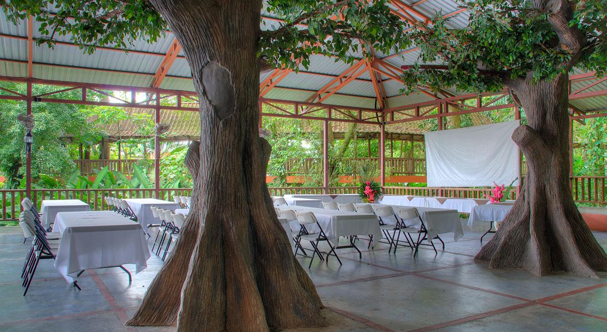 El Bambú 4
